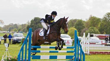 Horse with young jockey jumping hurdle