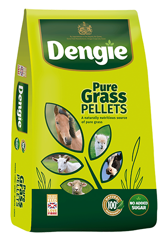 Dengie pure grass pellets