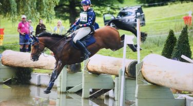 Horse jumping over log into Water
