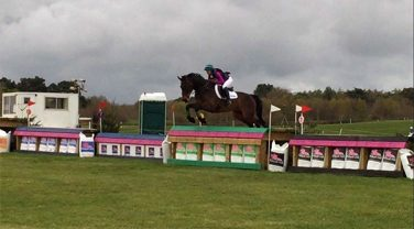 Horse in Dengie Saddle Jumping over Hurdle