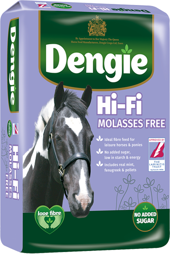 Hi-Fi Molasses Free