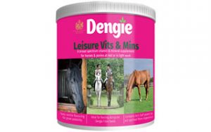 Dengie Leisure Vits and Mins