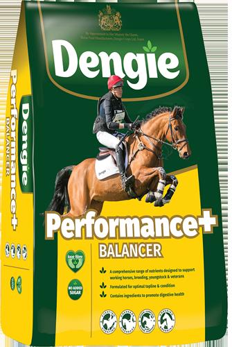 Dengie Performance+ Balancer