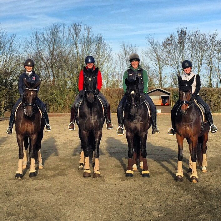 4 horses with owners