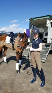 Horse preparing for Dressage competition