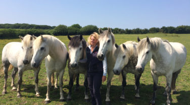 Dengie staff posing with Ponies in field