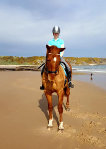 Horse walking on Beach