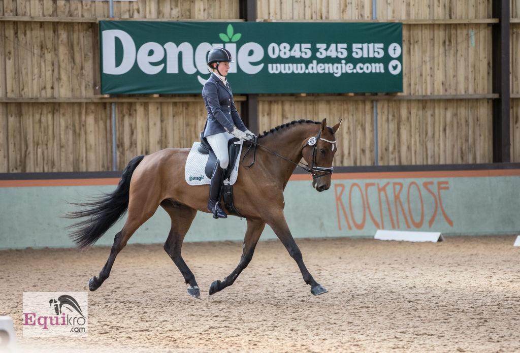 Dengie Horse Show