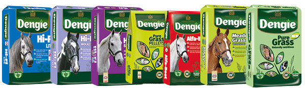 dengie forage replacers