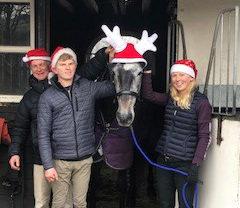 Christmas Horse 2018