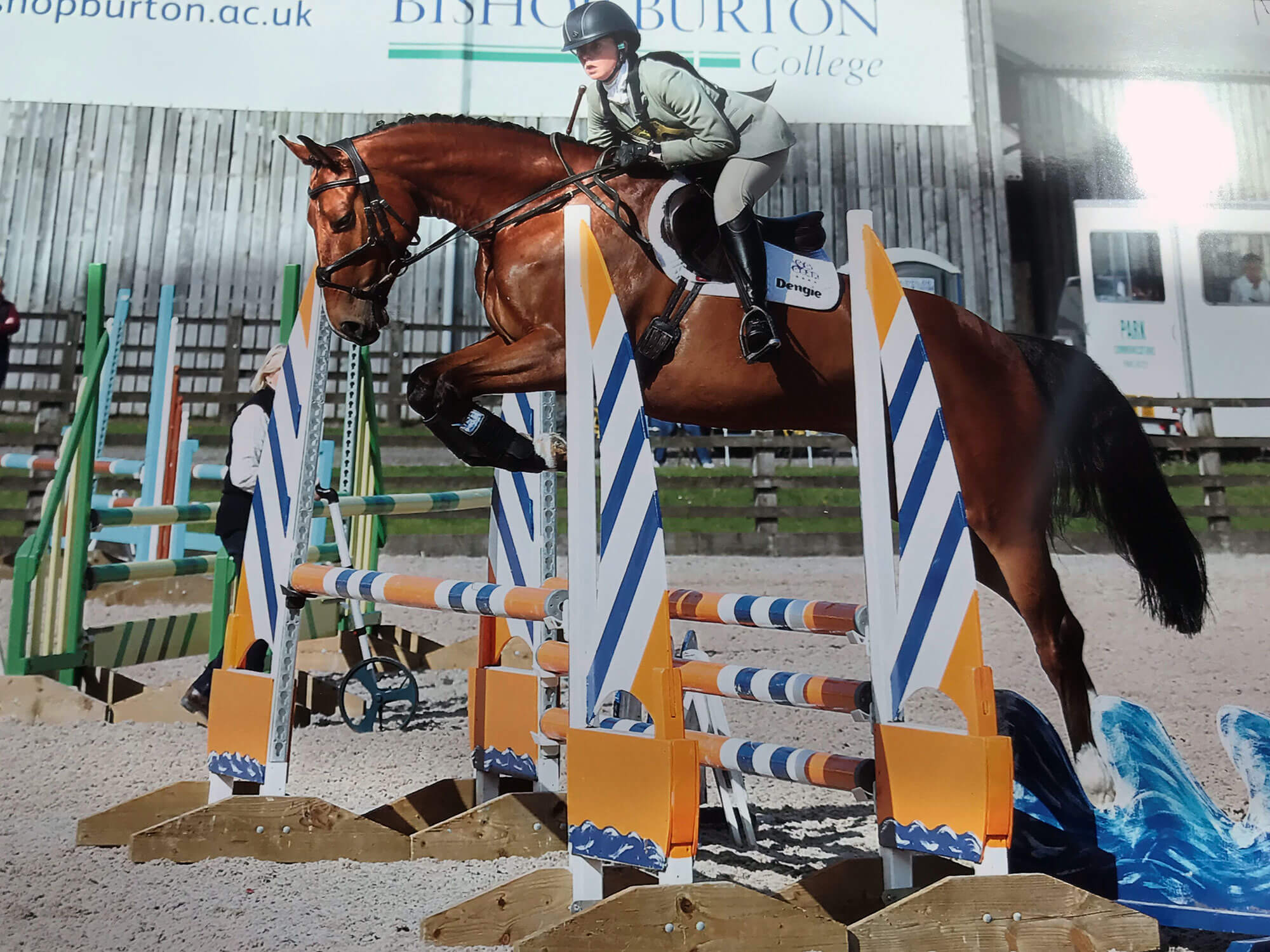 Horse Jumping cross country