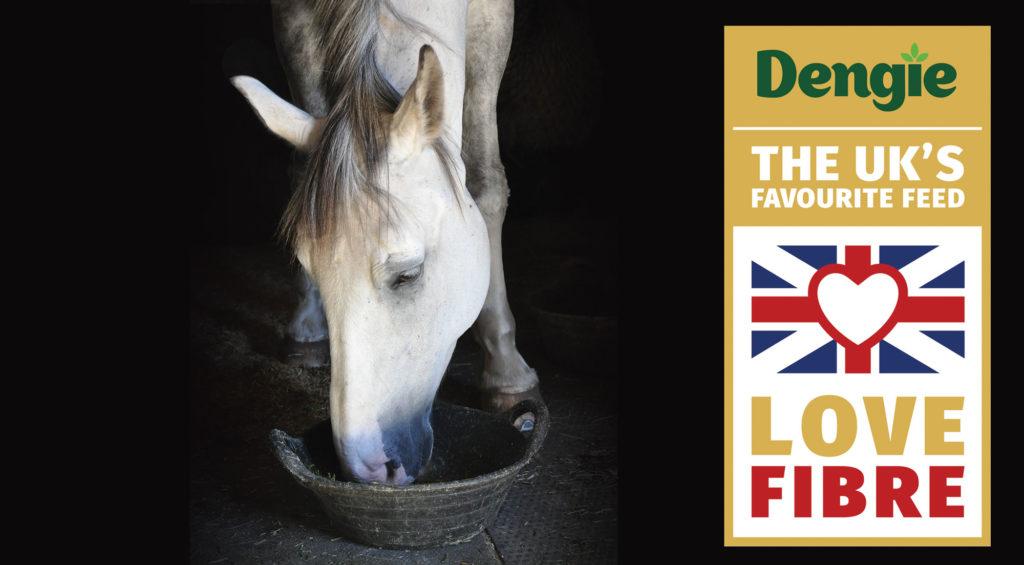 Dengie Horse Feed UK Favourite Horse Feed