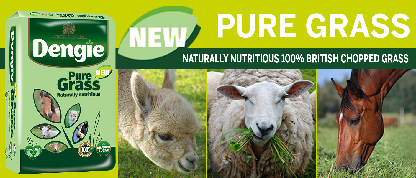 pure grass web banner