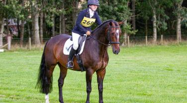 Frenchfield Novice Jockey on Horse standing
