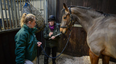 horse nutritionist giving advice to horse owner