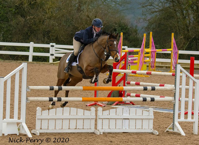 horse showjumping