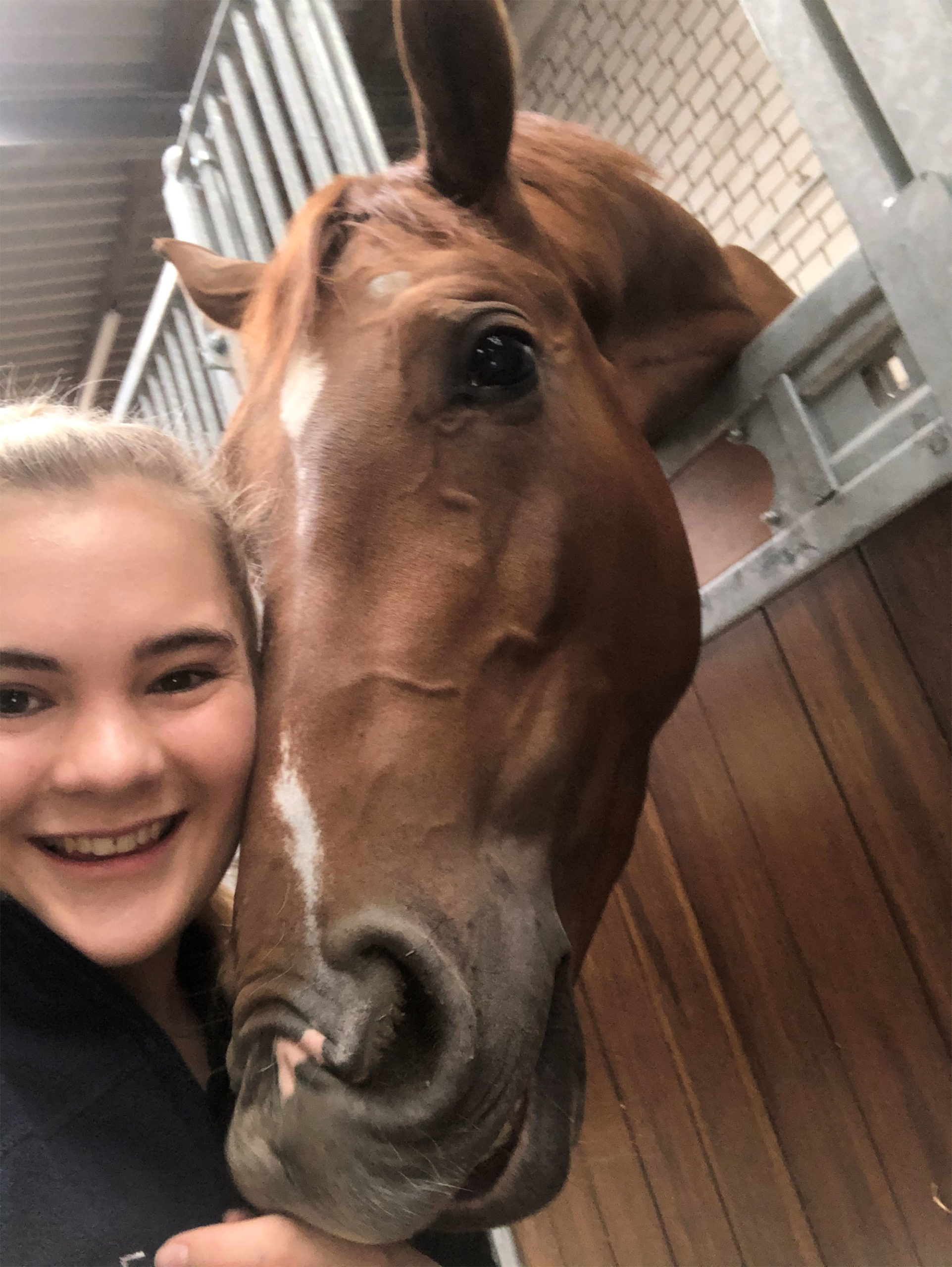 Girl and horse selfie