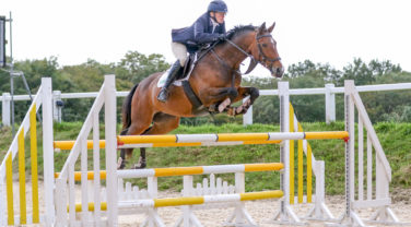 Horse and rider showjumping