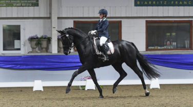 Hannah Esberger-Hancock and Iggy Pop - BD Young Horse Championships