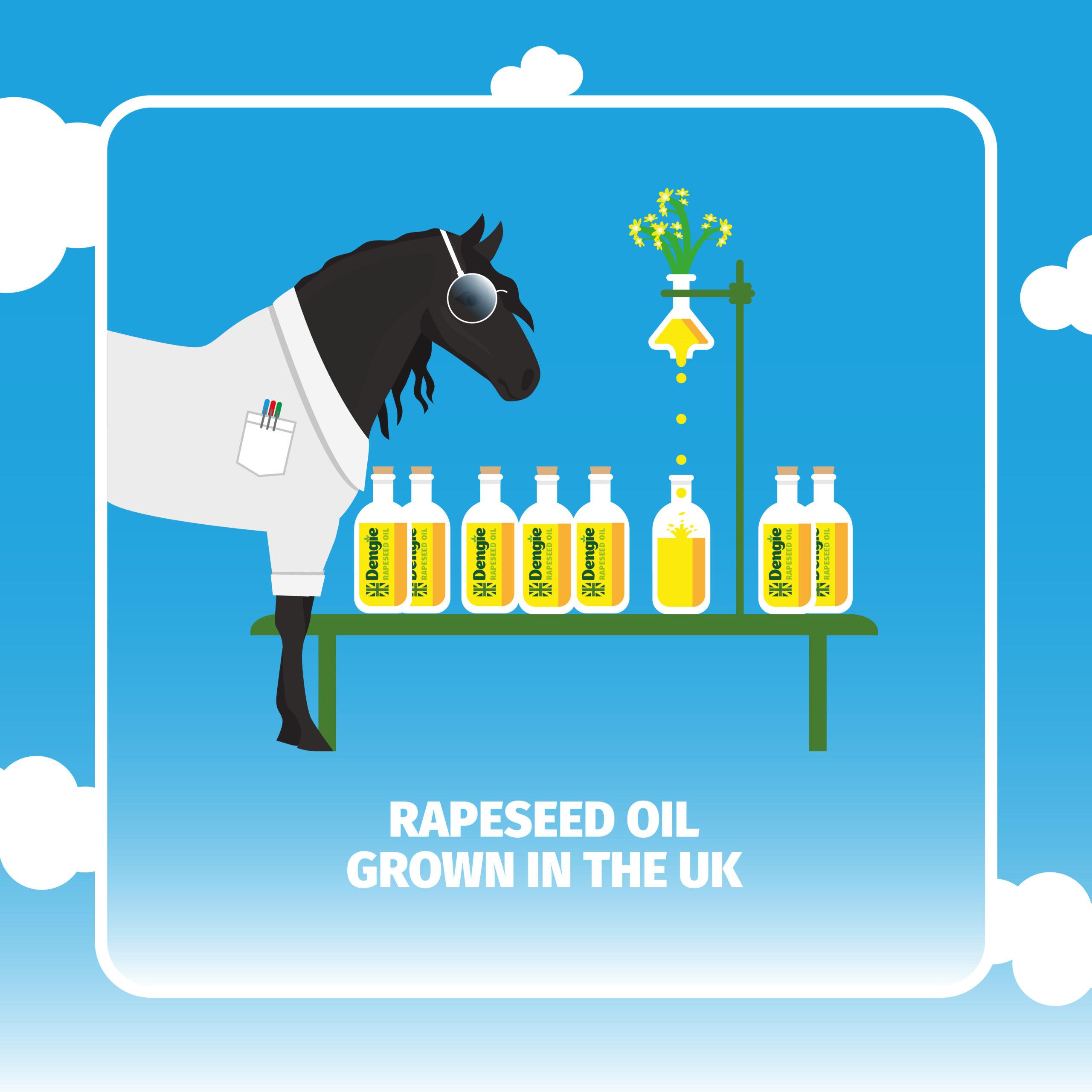 Dengie Alfa-a Oil Infographic