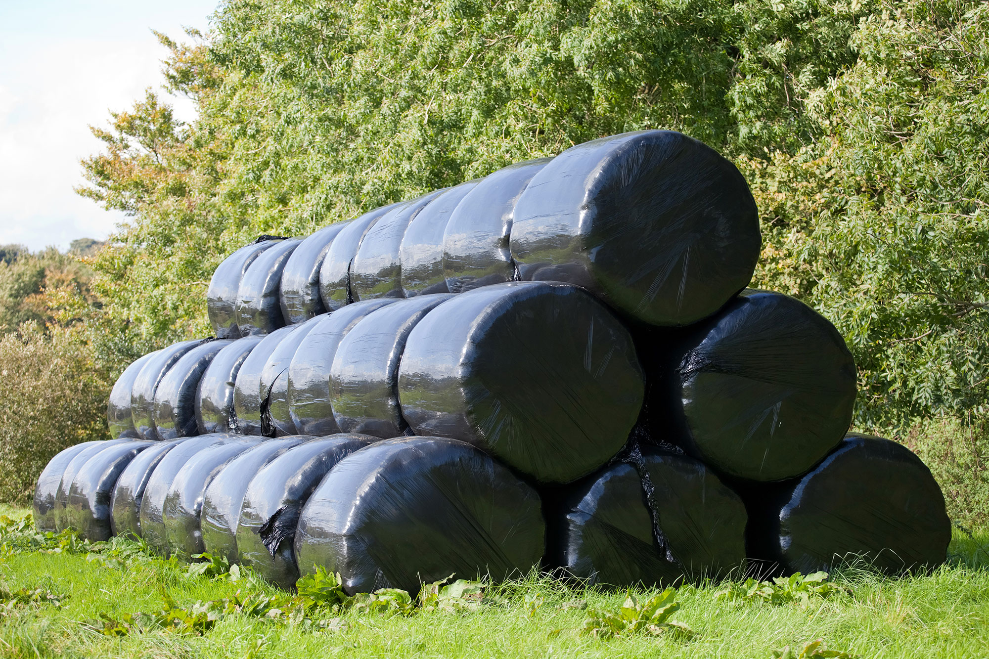 wrapped hay, haylage
