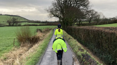 horse and riding hacking down countrylane
