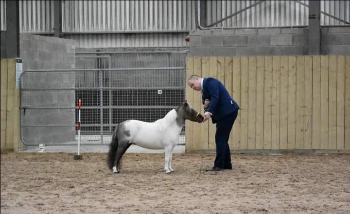 Shane OConnor and Shammy at a show